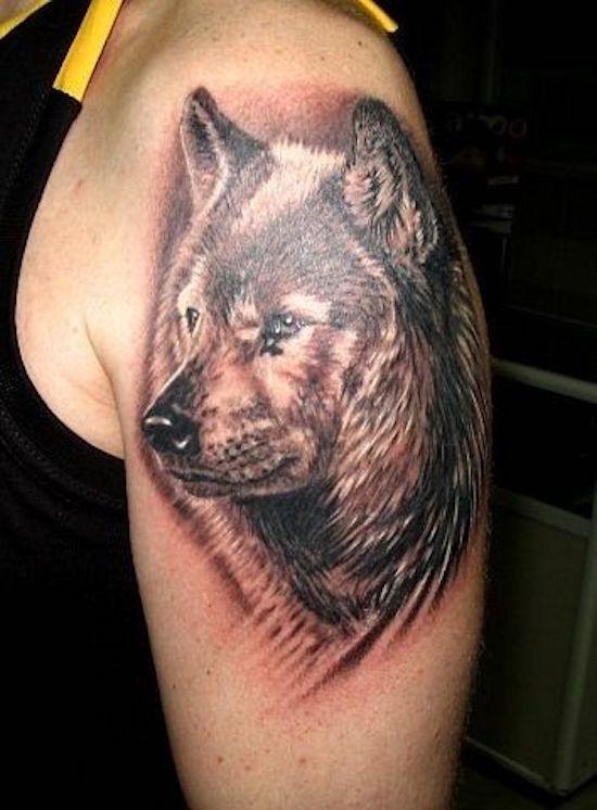 wolf tattoo 8 foto tattoo татуировки