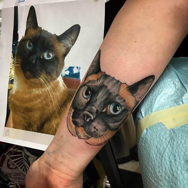 cat tattoo foto 14
