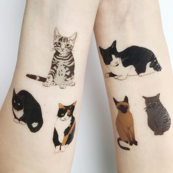 cat tattoo foto 16