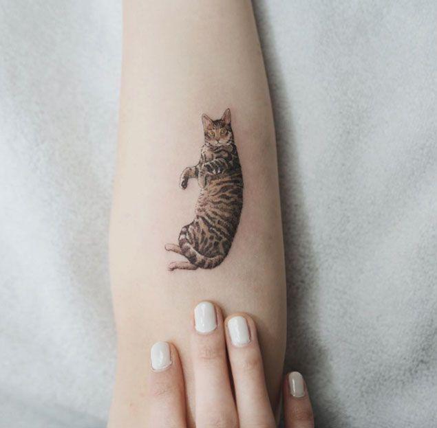 cat tattoo foto 17