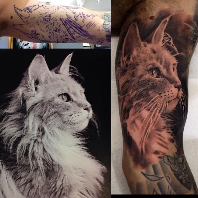 cat tattoo foto 19 foto tattoo татуировки