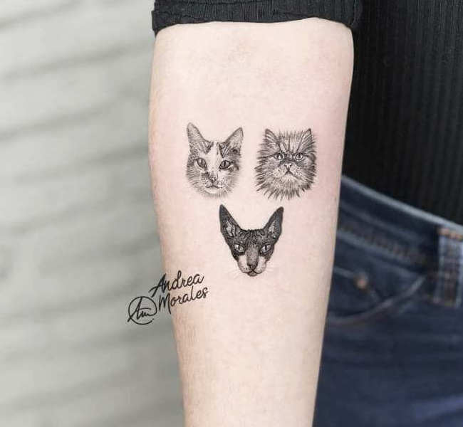 cat tattoo foto 2 foto tattoo татуировки