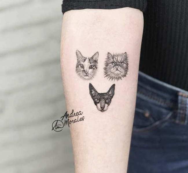cat tattoo foto 2