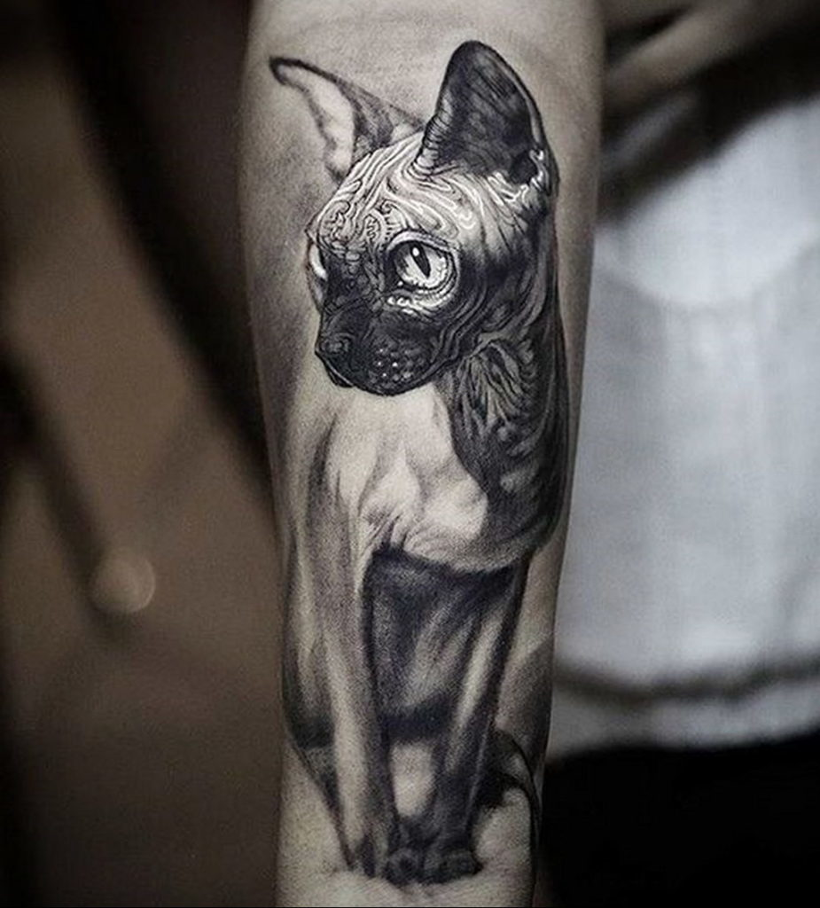 cat tattoo foto 22