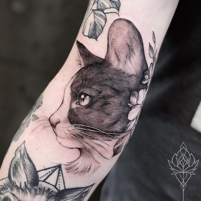 cat tattoo foto 7 foto tattoo татуировки